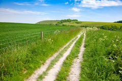 South Downs Way National Trail in Sussex Southern England UK. South Downs Way, a long distance footpath and bridleway along the South Downs hills in Sussex stock images