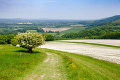 South Downs Way National Trail in Sussex Southern England UK. South Downs Way, a long distance footpath and bridleway along the South Downs hills in Sussex royalty free stock photo
