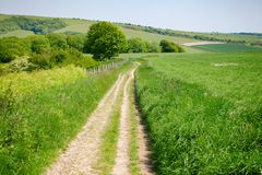 South Downs Way National Trail in Sussex Southern England UK. South Downs Way, a  long distance footpath and bridleway along the South Downs hills in Sussex Royalty Free Stock Image