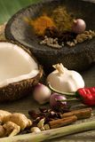 South East Asian Spices stock image