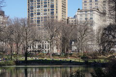 South East Central Park   +85 Stock Photo