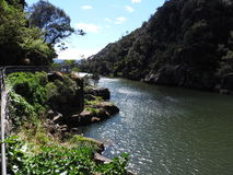 South Esk River at Cataract Gorge, Launceston, Tasmania Royalty Free Stock Images