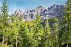 The south face of Dachstein massif - Austria Stock Image