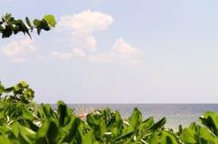 South florida seascape Stock Image