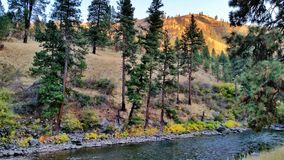 South Fork Payette River. Just before sunset on drive home among the South Fork Payette River, Idaho Royalty Free Stock Images