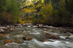 South Fork River. Roaring river in fall of colorful Colorado Stock Photo