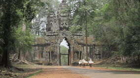 South gate in Angkor wat stock footage