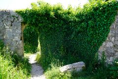 Ivy covered castle wall grey stone. South german travel destinations ivy covered castle wall grey stone stock photos