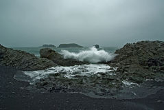 Dyrholaey volcanic beach iceland Stock Photography