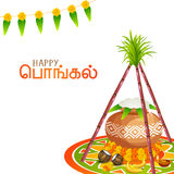 South Indian festival Happy Pongal celebration concept. Royalty Free Stock Image