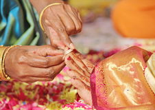South Indian Marriage Rituals Stock Images