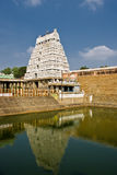 South indian temple Stock Photo