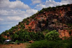 South Indian village landscape Royalty Free Stock Photos