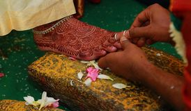 South Indian wedding rituals, Indian wedding rituals of bride and groom with wedding background. Indian wedding rituals, Indian wedding rituals of bride and Stock Photography