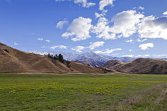 South Island Landscape, New Zealand. South Island mountain landscape scenery with a grass field in the foreground, Central Otago, New Zealand Stock Images