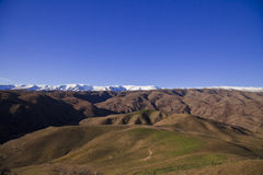 South Island Landscape, New Zealand. South Island Landscape Scenery, Canterbury, New Zealand Royalty Free Stock Photos