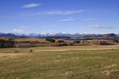 South Island Landscape, New Zealand. Wanaka landscape scenery, South Island, New Zealand Royalty Free Stock Images