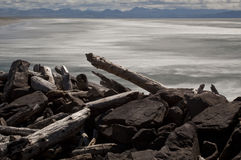 South Jetty, Columbia River Royalty Free Stock Images
