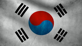 South Korea flag stock video