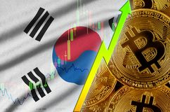South Korea flag and cryptocurrency growing trend with many golden bitcoins stock photos