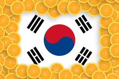 South Korea flag in fresh citrus fruit slices frame royalty free illustration