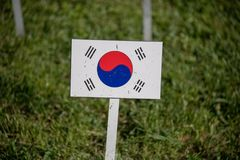 South korea flag isolated on green grass Stock Image