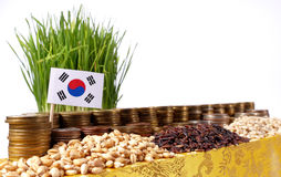 South Korea flag waving with stack of money coins and piles of wheat. And rice seeds royalty free stock image