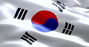 South korea flag waving texture fabric background, crisis of north and south korea, korean risk war stock footage