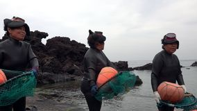 SOUTH KOREA - MAY 19, 2018: Traditional Women-Divers at Jeju Island, also Called as Haenyeo, Perform Symbolic Dance and. Song Before Gathering Shell-Fish in the stock video footage