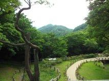 South korea park royalty free stock photography