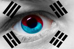 Beautiful south korean flag on mans face. South korean flag on mans face royalty free stock photos