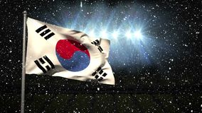 South Korean Flag in stadium during winter stock footage