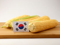 South Korean flag on a wooden panel with corn isolated on a whit stock image