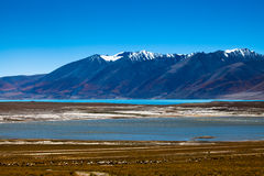 South of Lake Tangra Yumco Royalty Free Stock Images