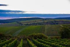 South Moravia. In Check Republic Stock Image