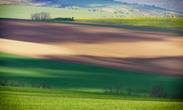 South Moravia is located in the south-western part of its historical region of Moravia in Czech republic. It is a magical place ni Stock Photos
