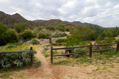 Free South Mountain Park, Phoenix, Arizona Stock Photo - 133284420