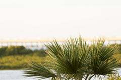South Padre Island. In the winter Royalty Free Stock Images