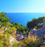 South part of Crimea peninsula, beach landscape. Pine royalty free stock photos