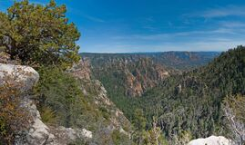 South Pocket Overlook (panorama) Royalty Free Stock Photography