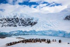 South Pole Fotos de archivo libres de regalías