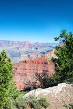 South Rim of Grand Canyon in Arizona Stock Images