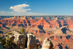 South Rim of Grand Canyon in Arizona panorama Stock Image