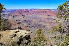 South rim of the Grand Canyon stock photography