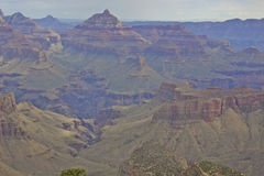 South Rim Grand Canyon Vista Royalty Free Stock Photo