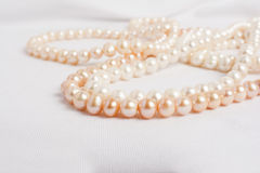 South-sea Pearl necklace on white background. Stock Photos