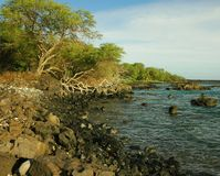 South Shore Coastline, Maui Royalty Free Stock Photo