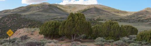 South Side of Diamond Peak In Colorado. Springtime Panorama View royalty free stock image