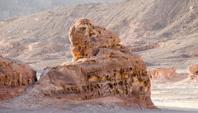 South sinai desert Royalty Free Stock Photos