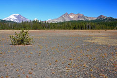 South Sister and Broken Top from Dutchman Flat. A flat field of volcanic cinders creates this alpine desert where only sparce vegetation grows.  As a backdrop Royalty Free Stock Photography